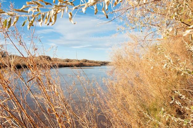 Paisagem de um rio no outono