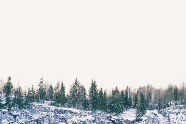 Paisagem de uma floresta de inverno bonito. manhã ensolarada na floresta de inverno. canyon tranquilo com neve