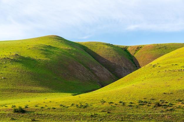 Paisagem de verão com belas colinas verdes
