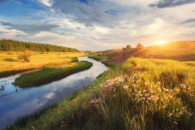 Paisagem de verão na bela estepe ao pôr do sol