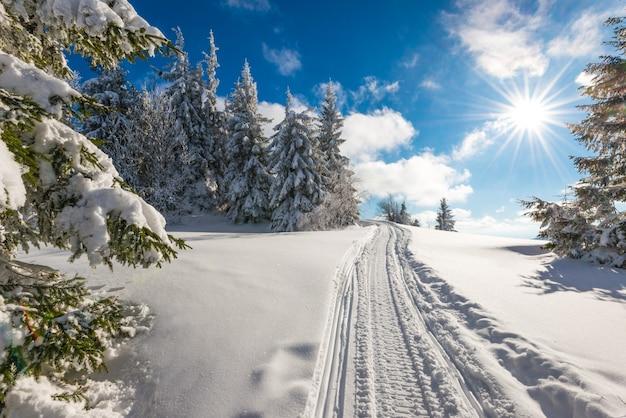 Paisagem deslumbrante e pitoresca de caminhos de inverno trilhados em uma colina coberta de neve, floresta de abetos em um dia ensolarado de inverno gelado contra um céu azul e nuvens brancas