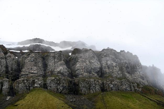 Paisagem do ártico no verão. arquipélago de franz jozef land. cabo de flora, ilha de gukera.