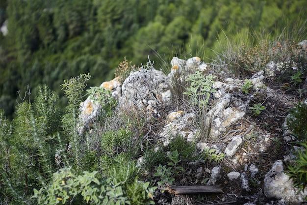 Paisagem do belo gotejador natural de sa stiddiosa localizado na parte central da sardenha