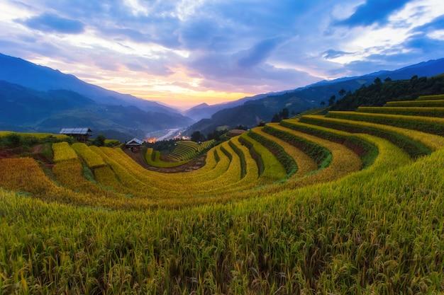 Paisagem do campo de arroz em terraços