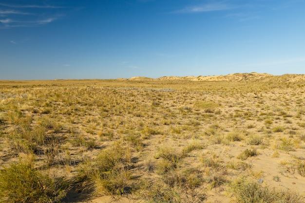 Paisagem do deserto, estepe no cazaquistão, grama seca e dunas de areia