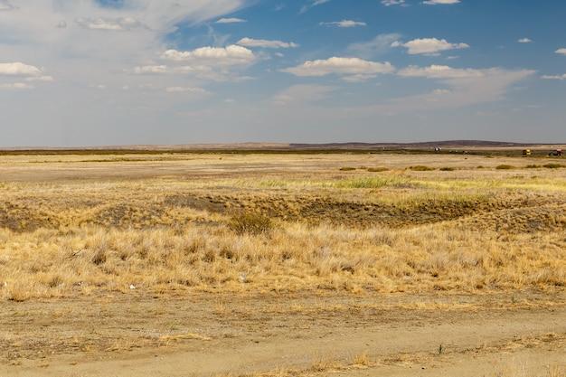 Paisagem do deserto, estepe no cazaquistão, grama seca