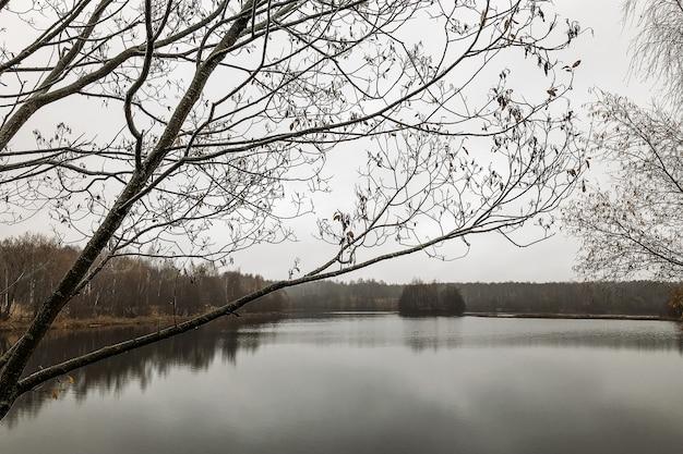Paisagem do final do outono na margem do lago e floresta sem folhas no horizonte