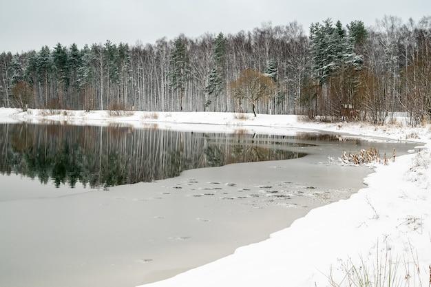 Paisagem do início do inverno com árvores da floresta refletidas na água do lago