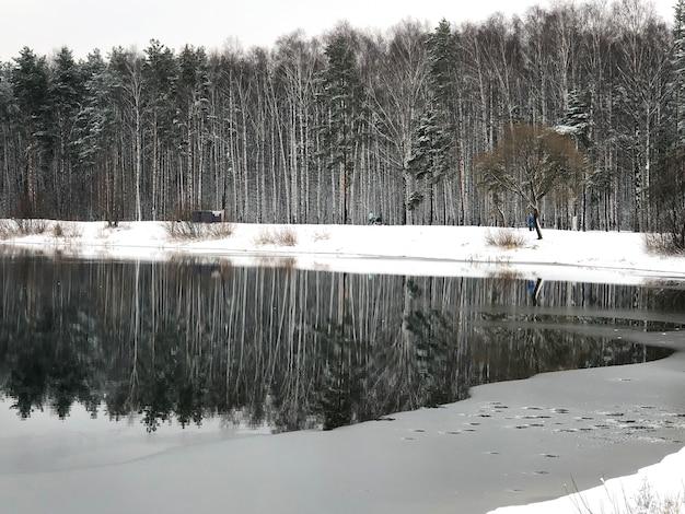 Paisagem do início do inverno com neve e árvores da floresta refletidas na água do lago