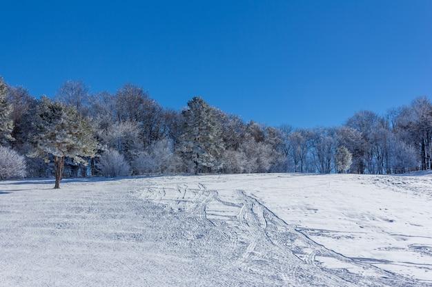 Paisagem do inverno com inclinação de neve para trenó, tubos e motos de neve no início da manhã