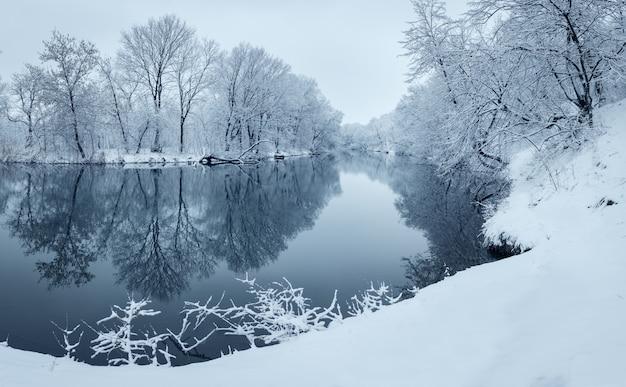 Paisagem do inverno com rio na floresta