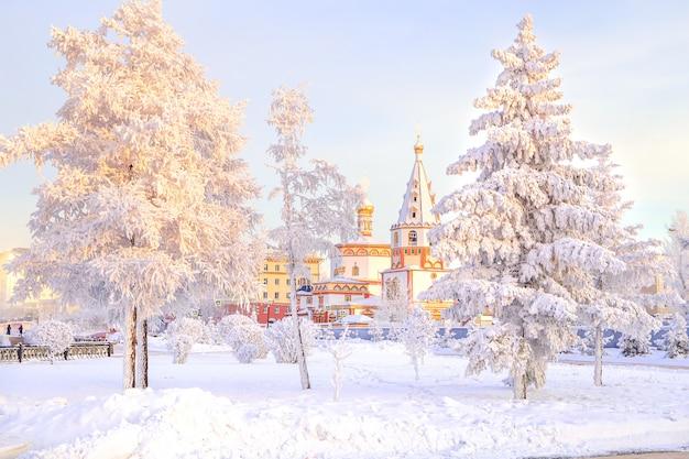 Paisagem do inverno de árvores de neve gelada no parque da cidade