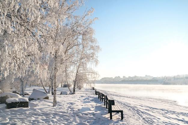 Paisagem do inverno de árvores geladas, neve branca no parque da cidade.