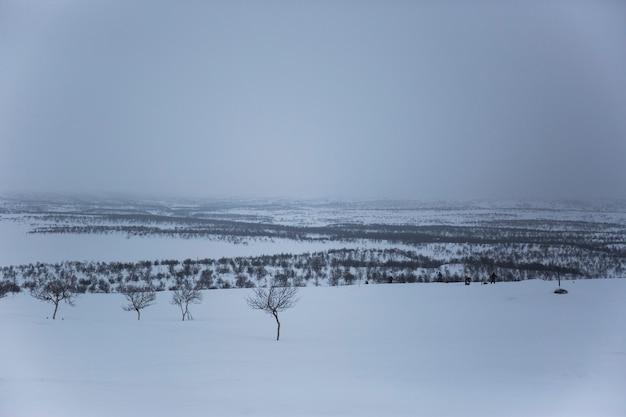 Paisagem do inverno em nuorgam, lapônia, finlândia