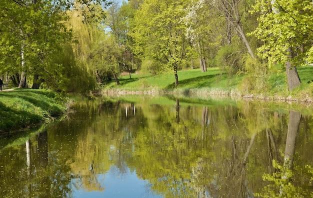 Paisagem do lago da primavera, árvores e grama, reflexo na água