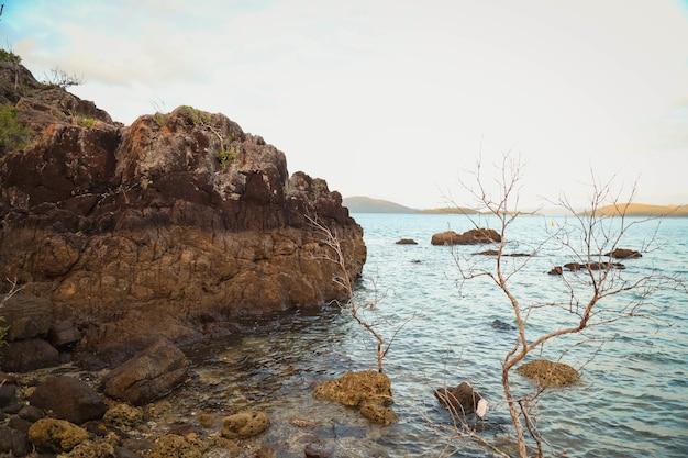 Paisagem do mar cercada por rochas e vegetação sob um céu nublado