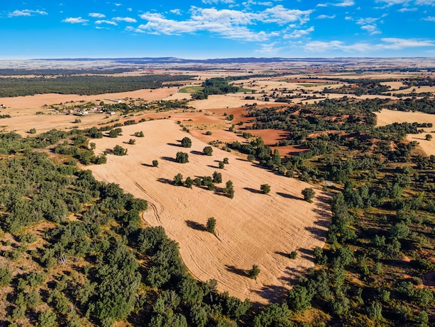Paisagem do país de campos de agricultura em um dia ensolarado com nuvens. segovia.