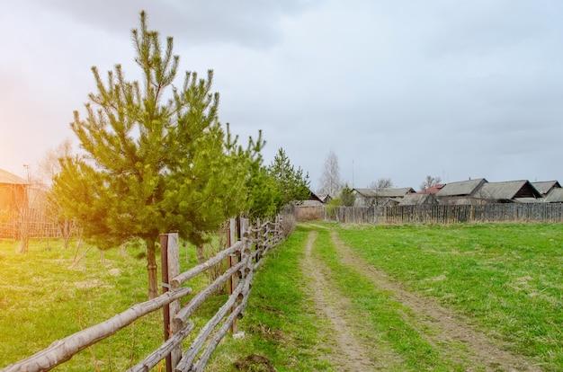 Paisagem do país do pinho e cerca a estrada rural no campo verde.