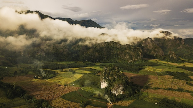 Paisagem do parque da floresta da montanha de phu lanka na província de phayao tailândia