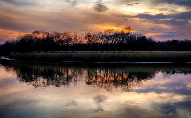 Paisagem do pôr do sol da floresta do rio, pôr do sol, nascer do sol, manhã, linda