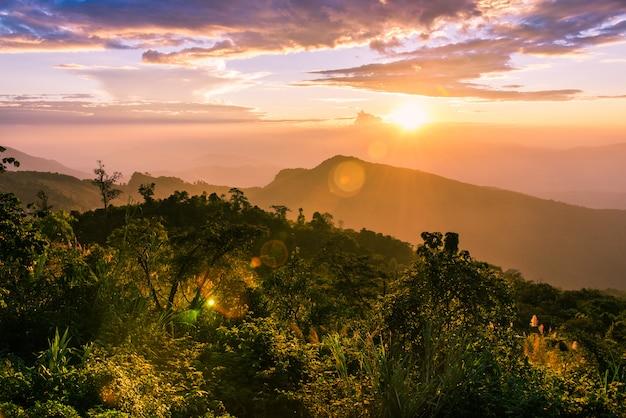 Paisagem do por do sol sobre montanhas da névoa e céu crepuscular sobre os montes na floresta.