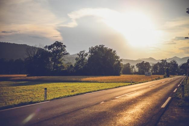 Paisagem do prado de verão. pôr do sol com uma estrada. vale de flores silvestres, uma estrada próxima a um campo