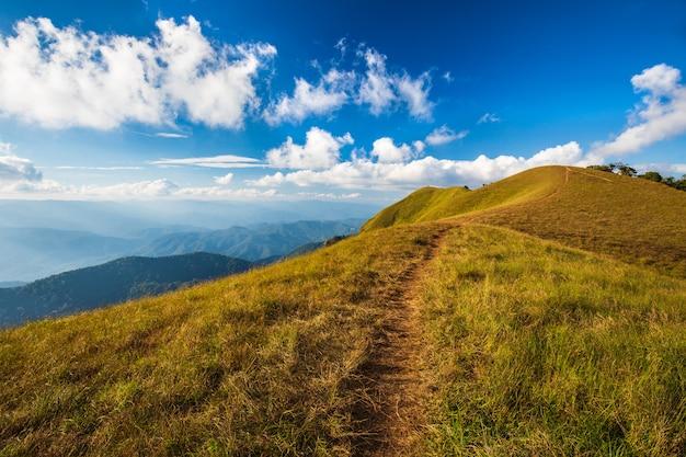 Paisagem do prado na montanha alta em doi segunda-feira chong, chiangmai, tailândia.