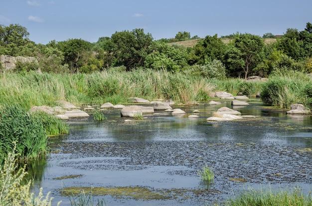 Paisagem do rio da zona rural no verão.