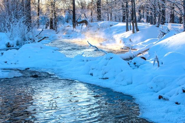 Paisagem do rio de inverno com nevoeiro