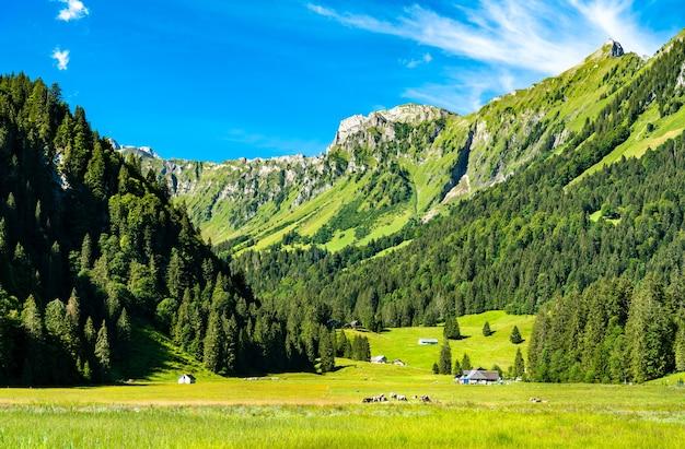 Paisagem do vale obersee no cantão de glarus, suíça