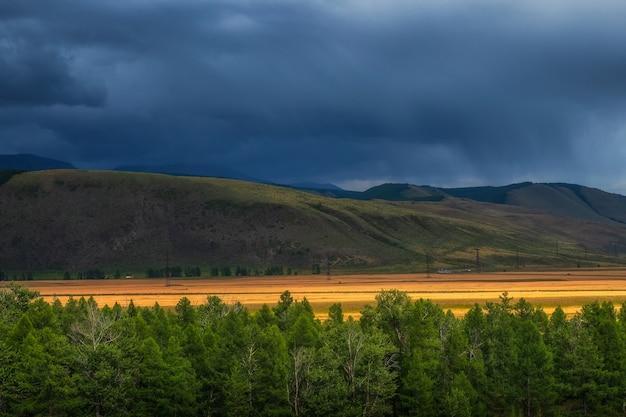 Paisagem dramática com a borda de uma floresta de coníferas e montanhas em uma névoa leve. atmosfera dramática paisagem montanhosa de outono. estepe kurai. montanhas altai.