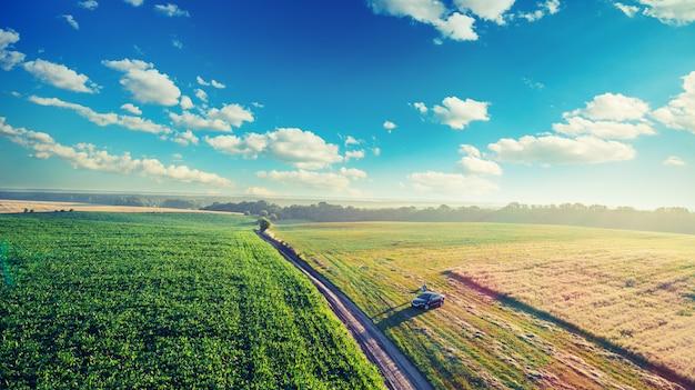 Paisagem em um campo verde.