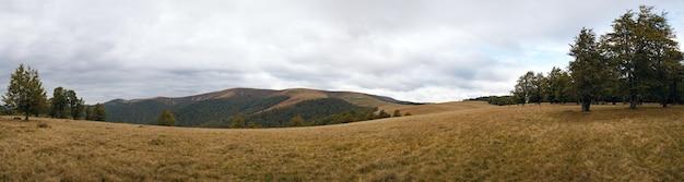 Paisagem enevoada das montanhas dos cárpatos (ucrânia). oito fotos compostas de imagem.