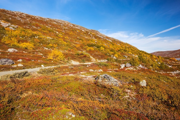 Paisagem ensolarada de outono na noruega gamle strynefjellsvegen