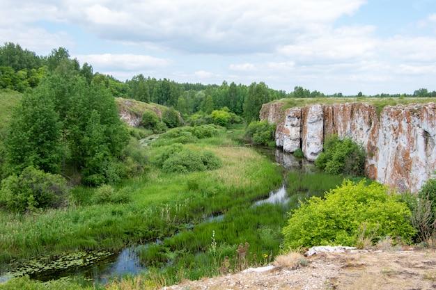 Paisagem ensolarada de verão com ravina, pântano, floresta e costa rochosa