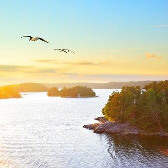 Paisagem escandinava com pequenas ilhas ao pôr do sol e gaivotas voadoras