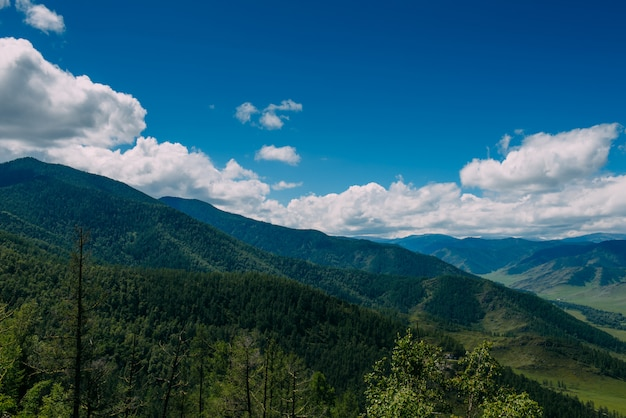 Paisagem espetacular com vista para o vale verde nas montanhas