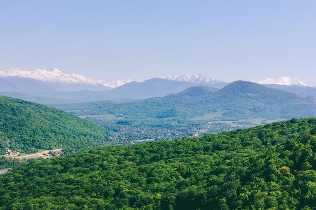 Paisagem florestal nas montanhas do cáucaso em uma manhã ensolarada de primavera ou verão