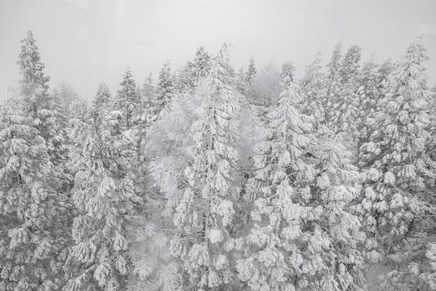 Paisagem gelo cobertura montanha céu