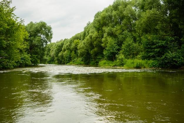 Paisagem idealista de rio fresco com água calma na floresta