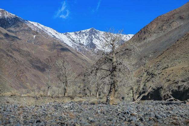 Paisagem incrível de inverno na mongólia cena colorida nas montanhas parque nacional tsagaan shuvuut