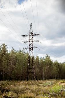 Paisagem industrial com postes de alta tensão em um campo na frente de uma floresta em dia nublado. eletricidade pilon na zona rural