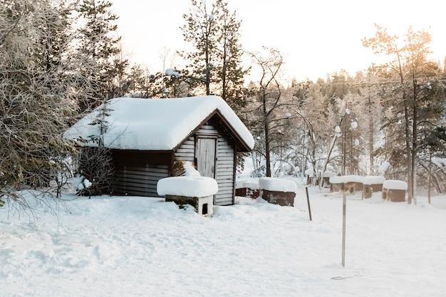 Paisagem inverno, em, kiruna, lapland, suécia