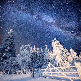 Paisagem mágica do inverno