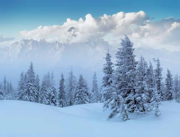 Paisagem misteriosa do inverno majestosas montanhas