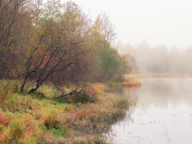 Paisagem mística da manhã com névoa sobre o lago. foco suave.