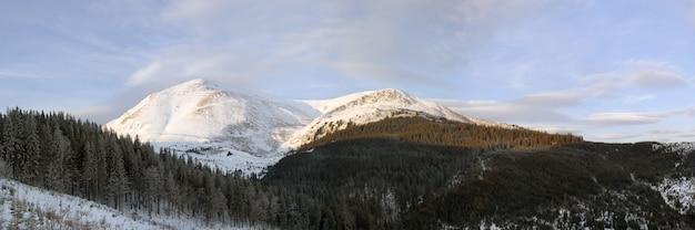 Paisagem montanhosa ao amanhecer de inverno (ucrânia, monte dos cárpatos, montanha petros)