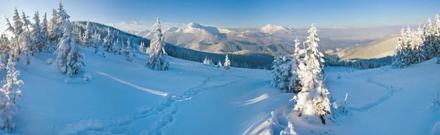 Paisagem montanhosa calma do inverno da manhã (monte goverla, montanhas dos cárpatos, ucrânia). quatro tiros costuram a imagem.