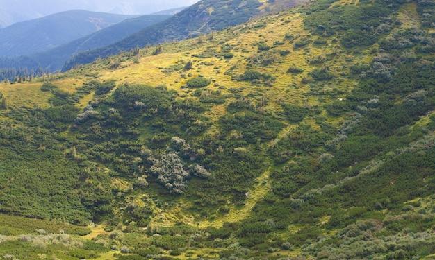 Paisagem montanhosa com encostas verdes