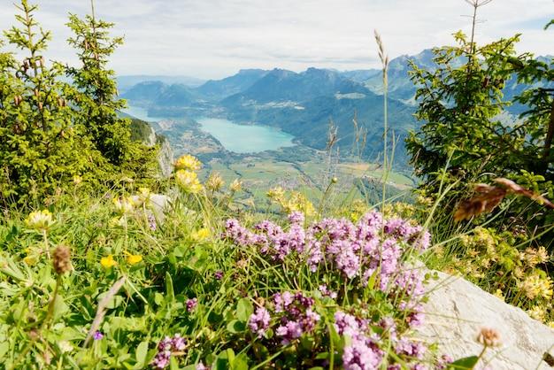 Paisagem montanhosa com lago nos alpes franceses